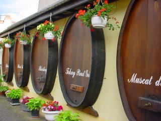 alsace-wine