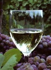 Французские вина