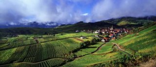 greenalsace